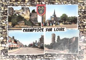 BR16193 Champtoge sur Loire  france