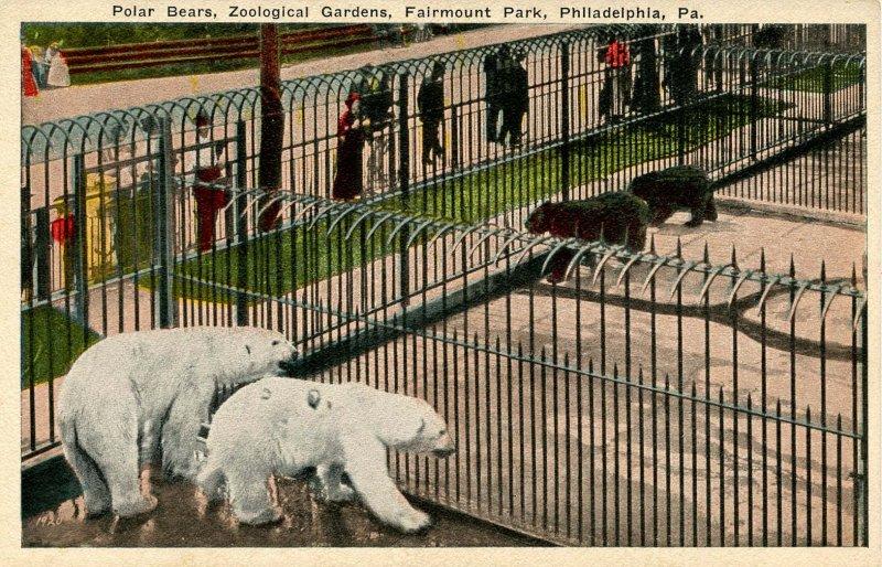 PA - Philadelphia. Fairmount Park, Polar Bears in Zoological Gardens