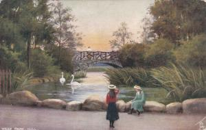 HULL , England , PU-1905 ; West Park, Swans in pond ; TUCK # 7144