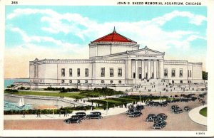 Illinois Chicago John G Shedd Memorial Aquarium Curteich