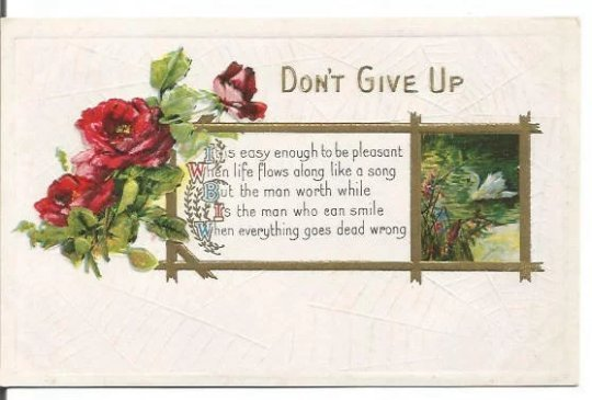 Red Roses and White Swan in Lake with Encouraging Message Don't Give Up in Gold