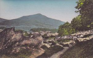 Green Peak Dorset Vermont Handcolored Albertype