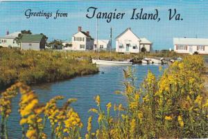 Greetings from Tangier Island, Virginia - Along Canal Road pm 1984