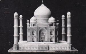 Illinois Chicago Model Of The Taj Mahal Chicago Natural History Museum