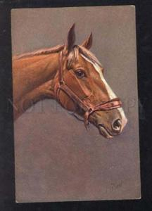 026021 Head of Charming HORSE. Sign RIVST Vintage PC