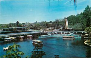 Aquartorium Florida's Silver Springs Aerial View Glass Bottom Boat 1960 Postcard