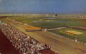 Bay Meadows Race Track, San Mateo, California, early postcard, unused
