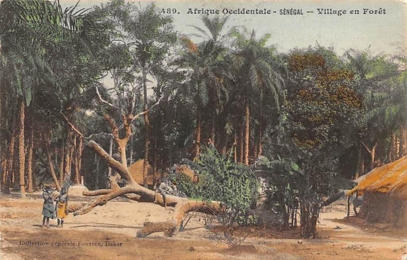 Senegal - Village en Foret, Forest, Nature 1915