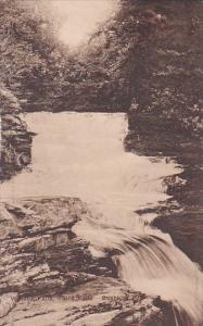Winona Falls Third Falls Bushkith Pennsylvania Albertype