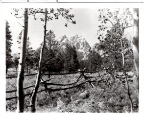 Haynes, 40355, Grand Teton Mtn. Teton National Park