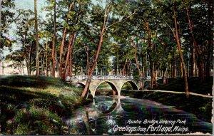 Maine Portland Greetings Showing Rustic Bridge In Deering Park 1908
