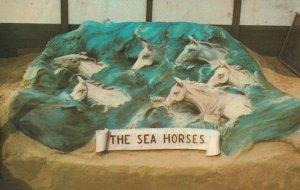 Sea Horses Weymouth Dorset Sand Model Artist Hand Signed 1970s Postcard