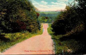 New York Pretty Driveway At Cazenovia 1912