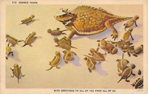 Horned Toads Frogs Unused