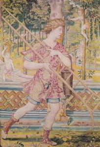 Vertumno & Pomona Lady With Ladder Tapestry Portugal Museum Postcard