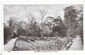 Middlesex Postcard - The Maze - Hampton Court Palace    Z419