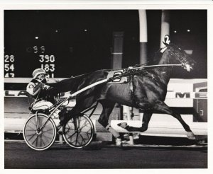 MEADOWLANDS RACETRACK,  STARMASTER Wins The Final, Harness Horse Race
