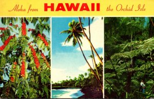 Hawaii Aloha From The Orchid Isle 1972