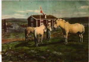CPM AK Gudbrandsdalen, Fjellgard NORWAY (840043)