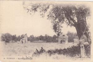Marabout En Ruines, Tlemcen, Algeria, Africa, 1900-1910s