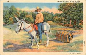 Typical Mexican Water Wagon man on mule donkey Mexico Postcard