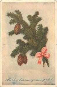 Postcard Greetings tree branch