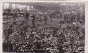 Netherlands Rotterdam Primavera 1933 Flower Show
