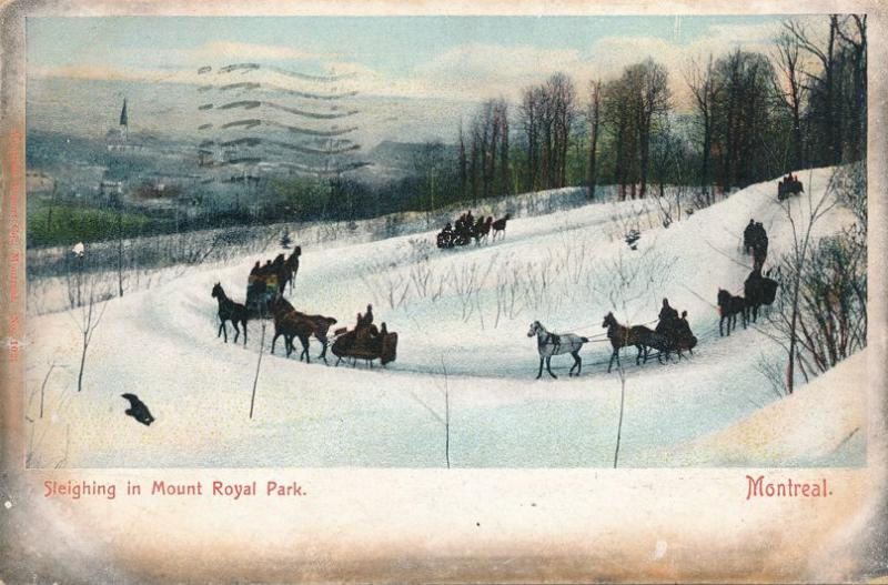 Horse Sleighing in Mount Royal Park - Montreal QC Quebec, Canada - pm 1905 - UDB