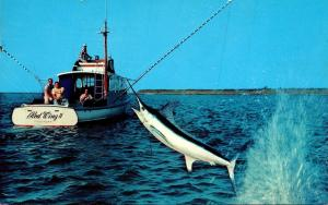 Deep Sea Fishing Pulling In A Big One 1965