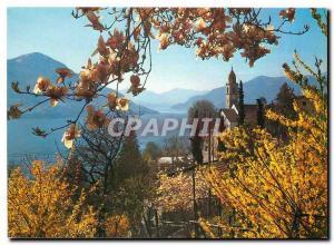 Postcard Modern Ronco Der Sonne nach ins Tessinl Zum günstigen