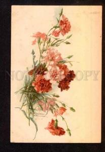 051628 CARNATIONS Bouquet by C. KLEIN vintage PC
