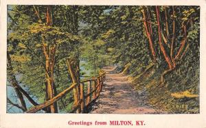 Miton Kentucky Greetings From tree lined country road antique pc Z43819