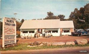 1950s Meredith New Hampshire Harts Turkey Farm Restaurant Colorpicture 11737