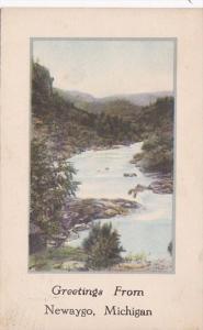 Michigan Greetings From Newaygo 1910