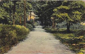 Beautiful Drive on the East Side, Conneaut Lake, Pennsylvania, PU-1911