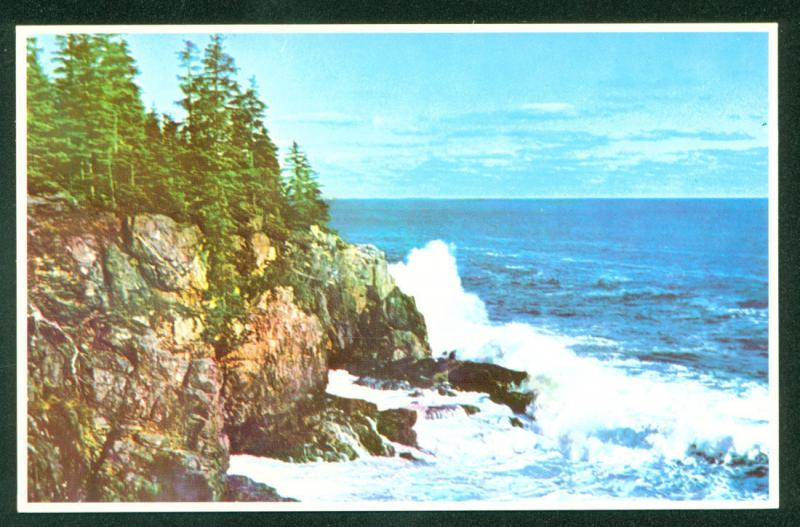 MAINE Otter Cliff BAR HARBOR Shore Line Drive THUNDER HOLE Coastline Postcard