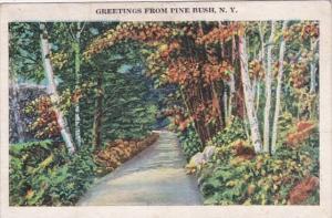 New York Greetings From Pine Bush 1938