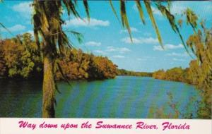 Alabama River Scene On Suwannee River