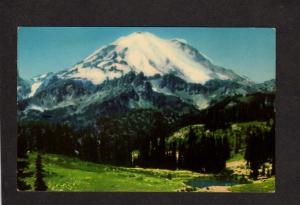 WA Mt Rainier Mount Mountain Washington State Postcard