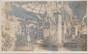 Victoria BC Palm Garden The Empress Hotel c1911 Trio Real Photo Postcard G95