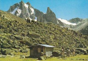 Hut on Mt. Kenya , 50-70s