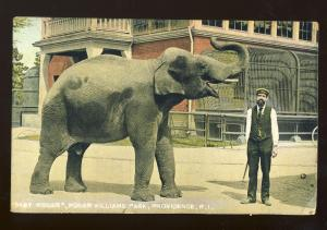 Providence, Rhode Island/RI Postcard, Baby Roger Elephant, Roger Williams Park