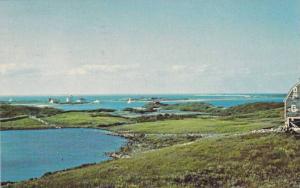 Meadow Scene, Stone Walls, Block Island, Rhode Island, PU-1974
