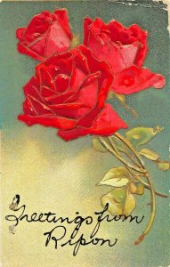 GREETINGS FROM RIPON WISCONSIN TO JANESVILLE MINNESOTA~1910 ROSES POSTCARD