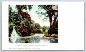 Cincinnati Ohio~Spring Grove Cemetery Waterfall~Detroit Pub Co 6633~c1902