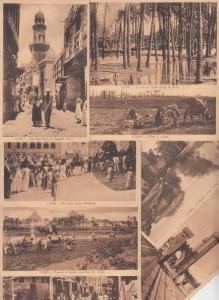 Lot 8 postcards Egypt Cairo