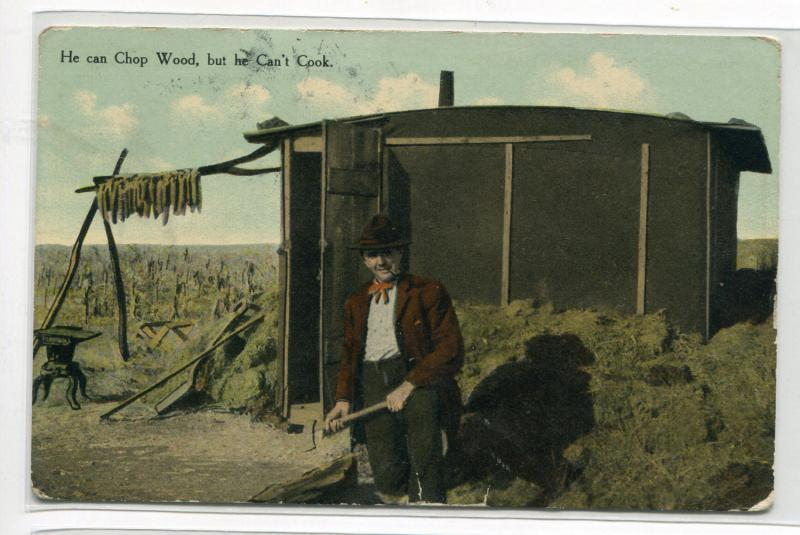 Western Pioneer Claim Farm Farming He Can Chop Wood But He Can't Cook postcard