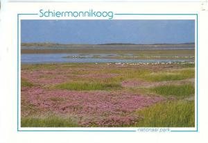 Netherlands, Schiermonnikoog, National Park, 1980s used