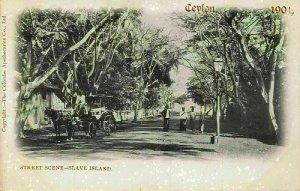 Ceylon Street Scene Slave Island Horse Carriage Postcard