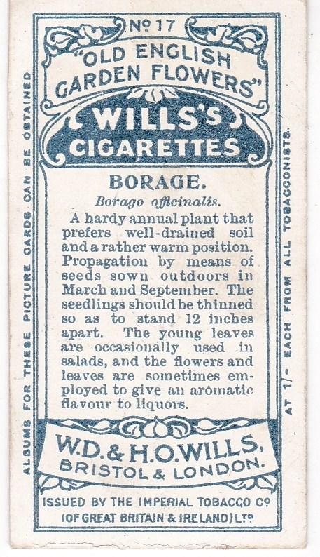 Cigarette Card Wills Old English Garden Flowers No 17